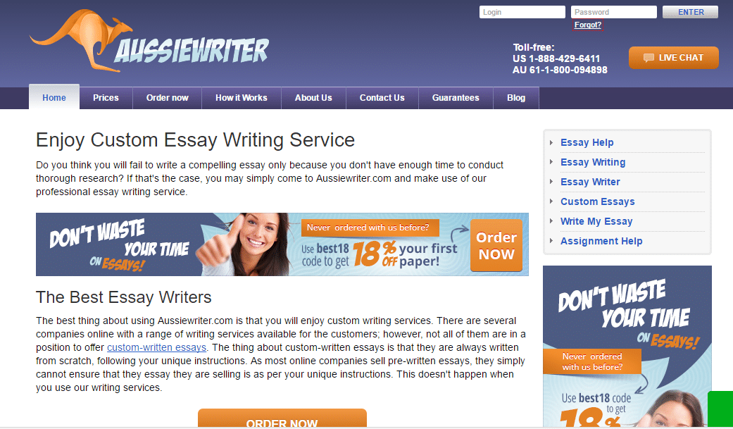 essay writing service online now